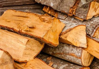Scheitholz, Briketts oder Pellets: Die verschiedenen Brennstoffe für Ihren Kaminofen im Vergleich